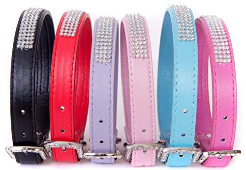 Lushpetz Strass Hundehalsband mit frei graduierten Hund oder Knochen Charme in 6 Farben erhältlich: Schwarz, Rot, Blau, Lila und Pink (M, Blau) -