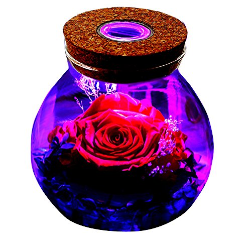 MXIN Préservé Rose réel Naturel Frais Fleur de la Main Romantique Rose Bouteille de lumière avec 4 Cadeaux Couleurs pour la Petite Amie, Les Femmes, Les Filles, Les sœurs, la fête des mères