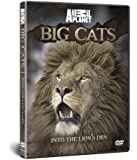 BIG CATS: Into The Lion's Den [DVD]