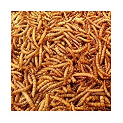Croston Corn Mill 5kg Wheatsheaf Dried Mealworms for Wild Birds