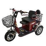 AA100 3-Rueda de Bicicleta eléctrica Silla de Ruedas Tres Scooters portátil Ancianos discapacitados Aire Libre del Recorrido de Cuatro Ruedas de la batería de Litio 48v20A 45 kilometros / 600w