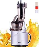 JIARUI Slow Juicer Entsafter, Früchte & Gemüsesaft Kaltpresse (150W, 60 U/min, 58 dB leise, BPA frei) mit Zubehör, Reinigungsbürste (Silber)