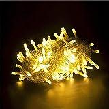 BABIFIS LED Laterne Weihnachten Neujahr Urlaub Dekoration Licht Schlafsaal Arrangiert Wasserdichte Outdoor Lichterkette 10M-100M, warmweiß