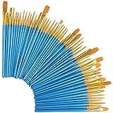 Taottao pennello in nylon spazzole per capelli in acrilico olio acquerelli artista kit professionale da colorare