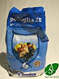 POLTIGLIA BORDOLESE MANICA KG.1