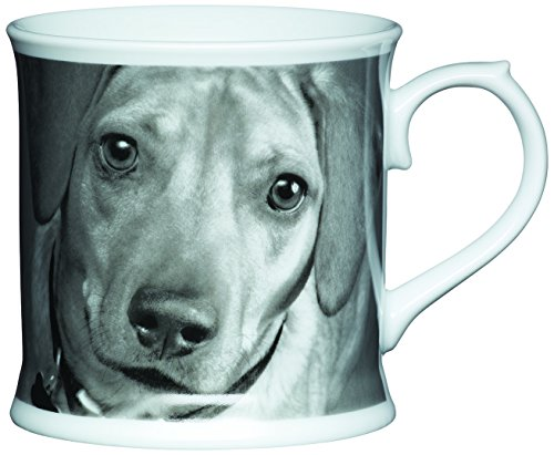 Kitchen Craft 400 ml cup shaped saucer dog porcelain beer mug