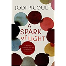 A Spark of Light: the fearless new novel from the Number One bestselling author