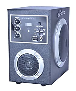 PALCO Multimedia Computer Speaker