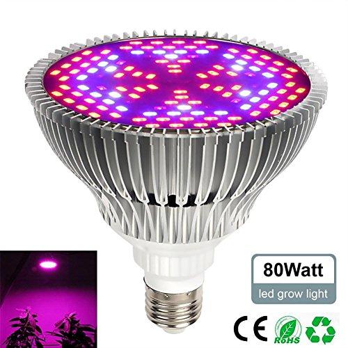 Pawaca 80W LED Pflanzenlampe Vollspektrum Pflanzen Licht Lampe, E27 Grow LED Pflanzenleuchte, Sonnenlicht in Gewächshäusern
