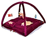 #5: Feathers-Nature's Touch Velvet Baby Gym Mosquito Net Cum Play Gym for Baby by SR Exims (0-6Months)