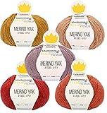 theofeel 5X 100g Sockenwolle Paket Regia Premium Merino Yak, 500g Sockenwolle Merino Yak Stricken oder Häkeln