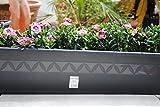 TERAPLAST Pflanzkasten,Blumenkasten,Balkonkasten,2er Set!!mit Wasserspeicher;Kunststoff,anthrazit,40cm