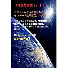 riputonnadohekyoukyuusareruindonokoutyanouennozittai: efueiougatyuuikankisurusyougekinouyakunoshiyouyanouminnoeiseizyoutai syakainouragawa (Japanese Edition)