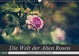 Die Welt der Alten Rosen (Wandkalender 2018 DIN A3 quer): Malerische Fotografien von alten Rosensorten. (Monatskalender, 14 Seiten ) (CALVENDO Natur) [Kalender] [Apr 16, 2017] Steudte, Regina
