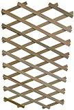 Apollo Ausziehbares Rankgitter aus Holz mit robuster Pflanzenhalterung, Holzscherengitter, Ziehharmonikagitter