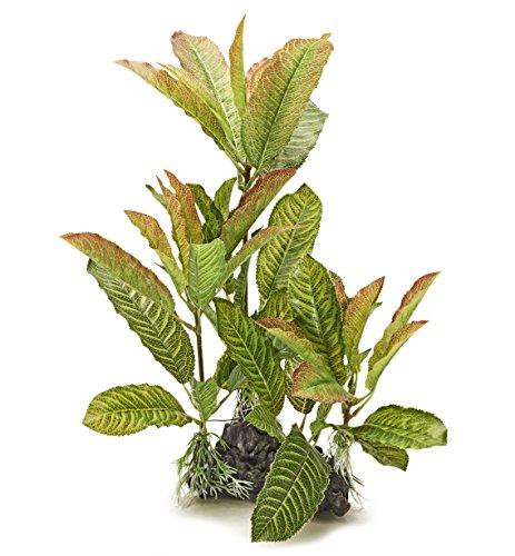 Pistachio Pet Schöne Realistische Aquarium Pflanze mit Sockel 35,6cm/35cm hoch. New für 2017. - Aquarium Realistische Pflanzen