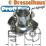 Dresselhaus Einschlagmuttern mit 4 Einschlagspitzen, 500 Stück, M 6 x 12 mm, galvanisch verzinkt
