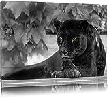 schöner schwarzer Panther schwarz/weiß auf Leinwand, XXL riesige Bilder fertig gerahmt mit Keilrahmen, Kunstdruck auf Wandbild mit Rahmen, günstiger als Gemälde oder Ölbild, kein Poster oder Plakat