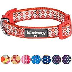Blueberry Pet Sweet Fantasy Vermilion Orange Wildflower Dog Collar, Neck 37cm-50cm, Medium, Adjustable Collars for Dogs
