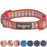 Blueberry Pet Süße Fantasie Blutoranges Wildblumen Hundehalsband, Hals 30cm-40cm, S, Verstellbare Halsbänder für Hunde