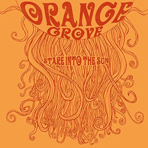 Stare into the Sun (Orange Grove)