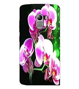 PrintDhaba Flowers D-3885 Back Case Cover for LENOVO VIBE X3 LITE (Multi-Coloured)