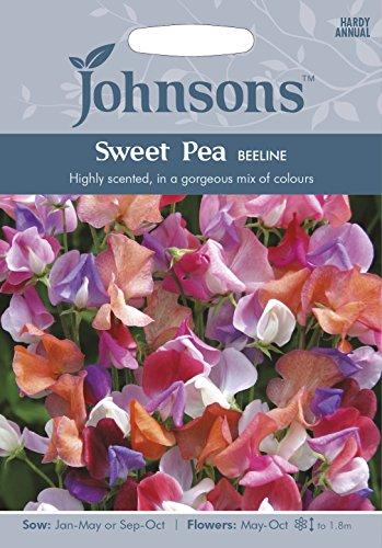 johnsons-uk-jo-fl-sweet-pea-beeline