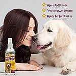 The Company of Animals ARM & HAMMER Dental Spray Clear 6