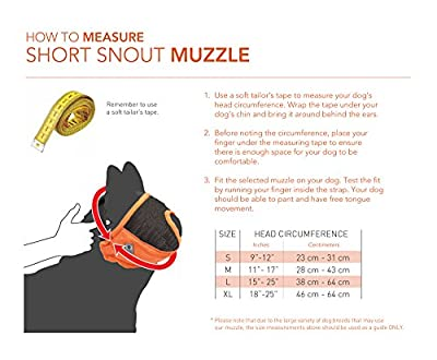 Canine Friendly Short Snout Dog Muzzle, Orange from RC Pet Products Limited