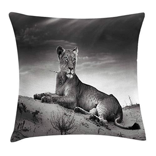 Wüste Stricken (Zhengzho Kissen KissenbezugWilde Löwin auf afrikanischem Tier Safari Image der Wüsten-Düne Decor Square Pillow Case 45x45 cm)