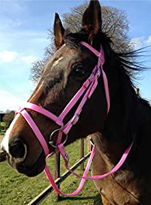 Pink/Red/Blue nylon, endurance bridle in sizes Full/Cob/Pony ...
