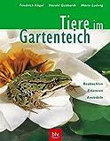 Tiere im Gartenteich: Beobachten · Erkennen · Ansiedeln