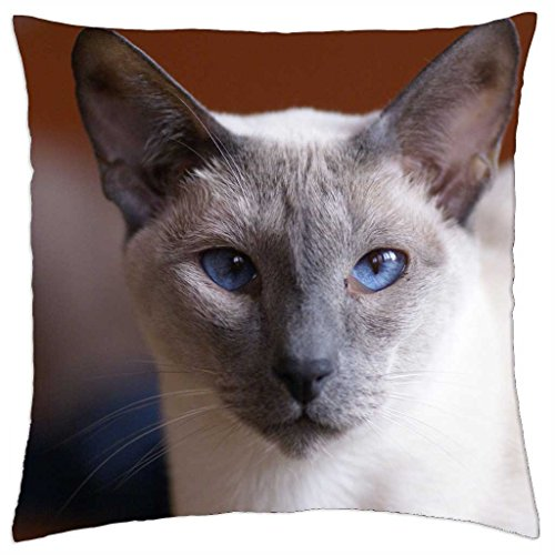 iRocket - Pretty Blue Eyed Silver Cat - Throw Pillow Cover (24