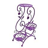 LongYu Soporte de flores Estante de flores de hierro Flor de varias plantas Sala de estar Balcón Soporte de macetas de interior (Color : Purple)