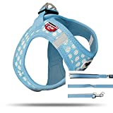 Curli Puppy Vest Geschirr Air-Mesh + Basic Leine SkyBlue-Circle VP-SBCI Größe S