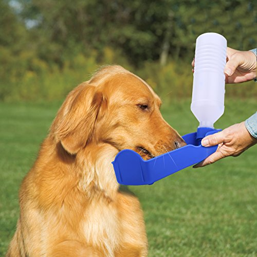 Pecute Hund Trinkflasche Wasserflasche Reiseflasche klappbar 500 ML Blau