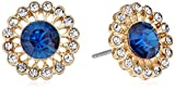 Accessorize Studs for Women (Blue) (MN-1...