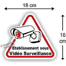 """Sticker Autocollant """" Etablissement sous Vidéo Surveillance """" 18 cm"""