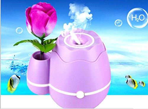 HL Usb-Mini-Luftbefeuchter Ultraschall-Zerstäubung Luftbefeuchter Blumengesteck , Purple , 11.1*10*11.5Cm,purple,11.1*10*11.5cm