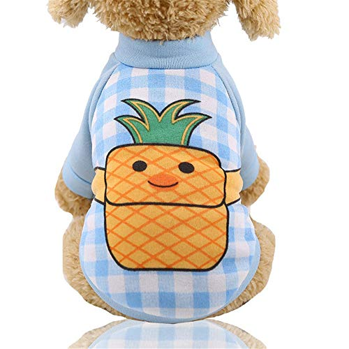 Kostüm Vorhanden Hunde 2 - DuYanDY Haustier kleidet Nette Modestrickjacke der Karikatur innerhalb der warmen Haustierversorgungen des dünnen Samts,XL
