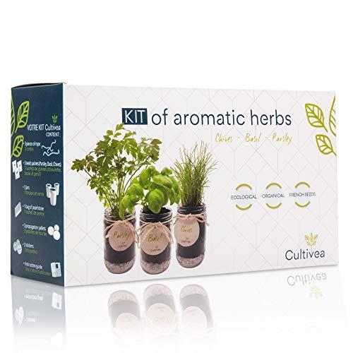 cultivea set completo - fai crescere le tue di erbe aromatiche - 100% semi ecologici e biologici - semi con 3 vasetti di vetro (erba cipollina, cipollina, basilico) - do it yourself -
