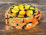 Martingal Hundehalsband: Citrus, von Hand gefertigt in Spanien von Wakakán