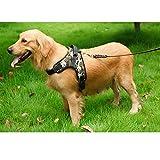 No-Pull Dog Harnesses- einziehbare Haustier Halfter Leinwand Hundeleine Kragen Weiche komfortable leichte Einstellbare Haustier Training Harnesses für kleine mittelgroße große fette Hunde- Schwarz