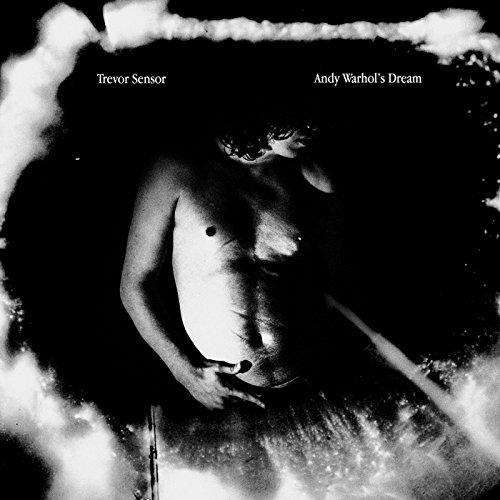 Andy Warhol'S Dream [Vinyl LP]