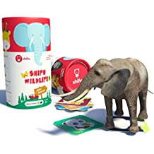 Shifu Jeep Safari Animals AR Educational 4D Game for Toddlers 20 Cards, Toy Gift for Kids, Age 2+ (Green)