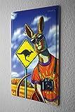 Blechschild Welt Reise Känguru Tourist Kamera Australien Wand Deko Schild 20X30 cm