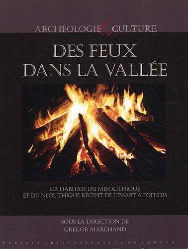 Des feux dans la vallée : Les habitats du Mésolithique et du Néolithique récent à l'Essart à Poitiers (Vienne)