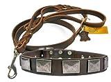 Dean & Tyler Vintage Leder Halsband mit passenden Braidy Haarschmuck Strauß Leine für Haustiere, 32bis 91cm, braun