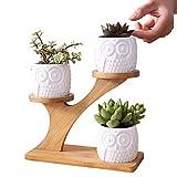 Weiße Blumentopf-Set der Eule, kreativer saftiger Pflanzer-Blumentopf-Dekor-Verzierung für Innenministerium-Schreibtisch, 3 Minisatz ohne Anlage