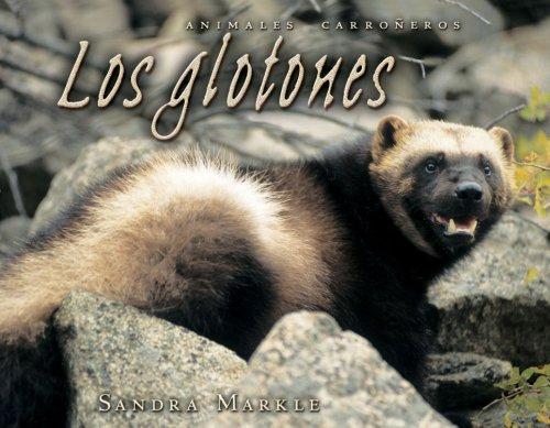 Los Glotones (Animales Carroneros/Animal Scavengers) por Sandra Markle